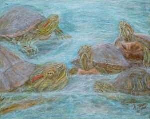 44-So-Turtle-Aqua-Private-Collection